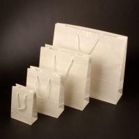 Papierová taška Modle 2 biela